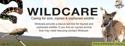 Wildcare-sign